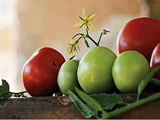 白色果蔬的养颜功效