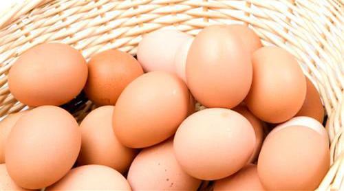 禽流感来了 如何选购健康禽肉及蛋类