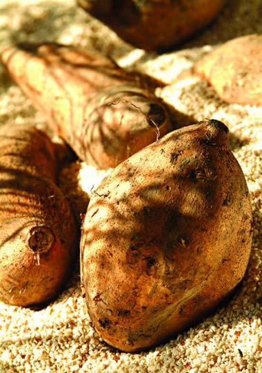 冬天吃红薯3点必须知