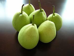 冬天吃什么水果最好