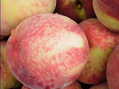 果味缤纷夏季水果该怎样吃